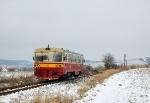 810_191-7_Morkov