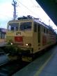 Lokomotiva 363 127-2 v Benesově po střetu se stromem