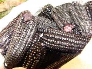 Puno - tržnice - černá kukuřice 17. 2. 2011