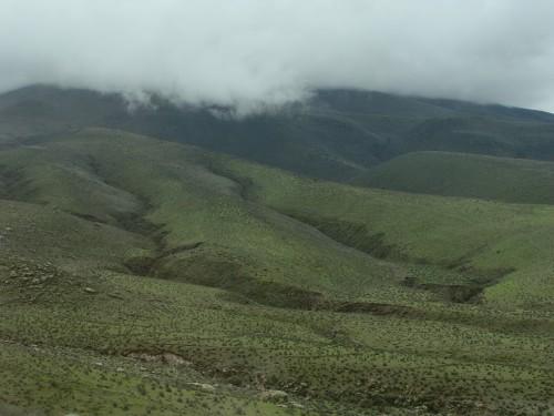 Na cestě do údolí Chivay - vulkanická krajina s vegetací cca 3000 m.n.m. 18.2.2011 9:10.