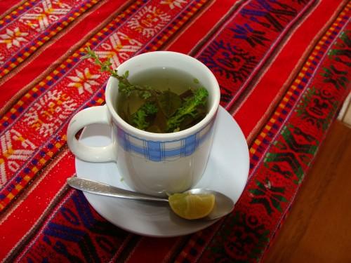 Tripple tea je čaj, který se skládá z andské máty zvané muňa, lístků koky a kočičího drápu (Serrilla/Cat's Claw/uña de gato). Čaj má léčivé účinky a také jako kokový čaj pomáhá na horskou nemoc. 18.2.2011  9:53.