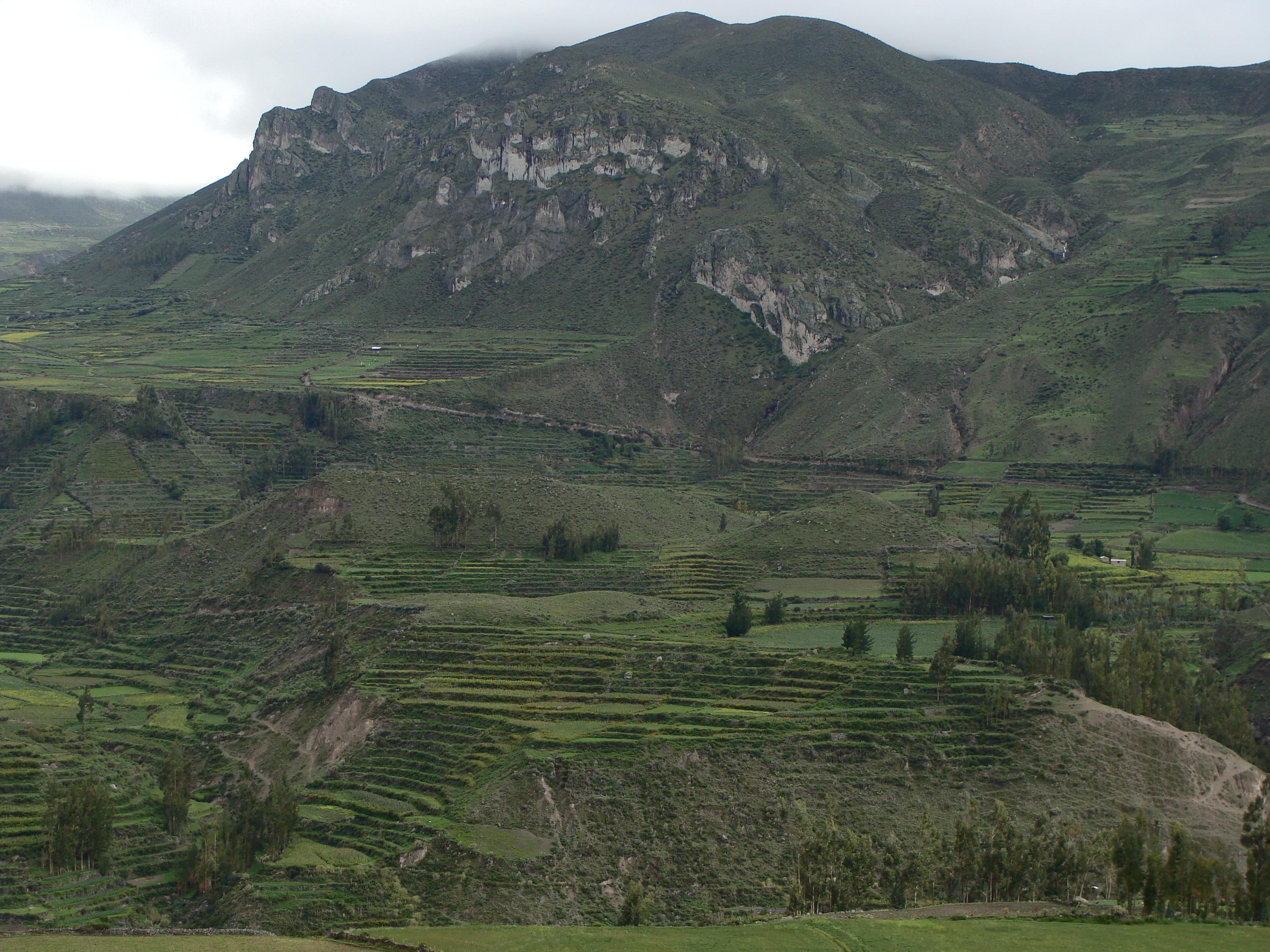 Vesnice Achopa - incké terasy dne 19. 2. 2011