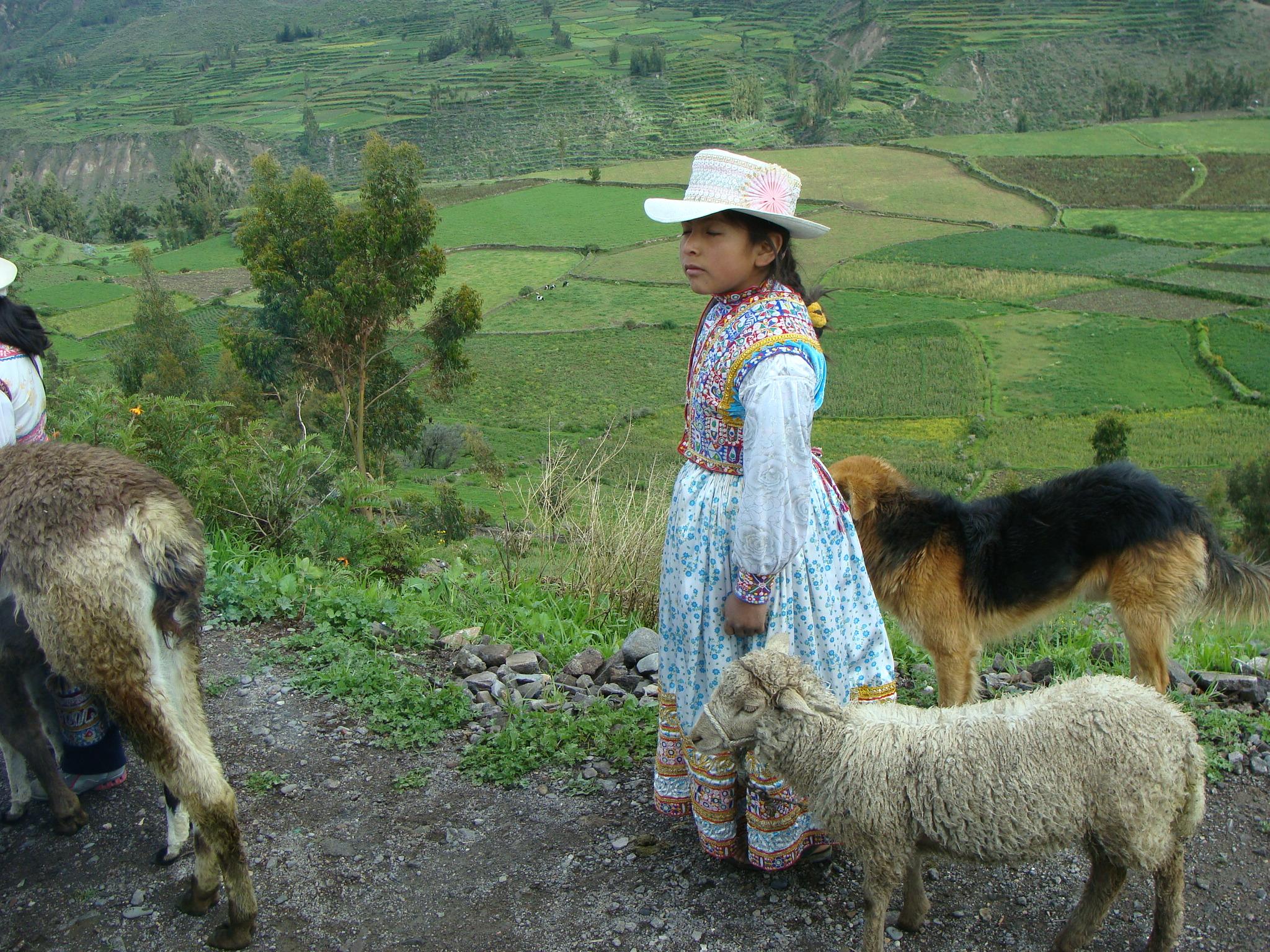 Vesnice Achopa - dívka ovce a pes dne 19. 2. 2011