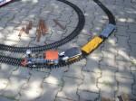 Jedna z modelových souprav na rozsáhlém kolejišti