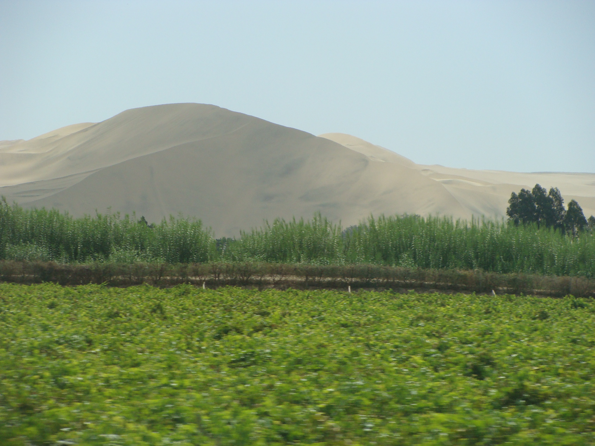 Na cestě do Paracasu - písečná duna kopec 21. 2. 2011 14::29