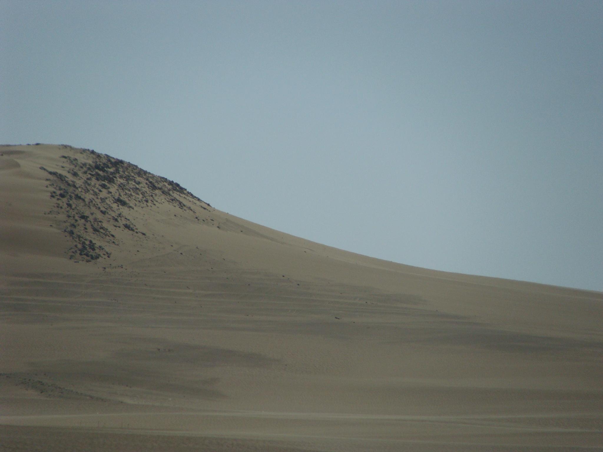 Ica - písečné duny - biotop 21. 2. 2011 15:21