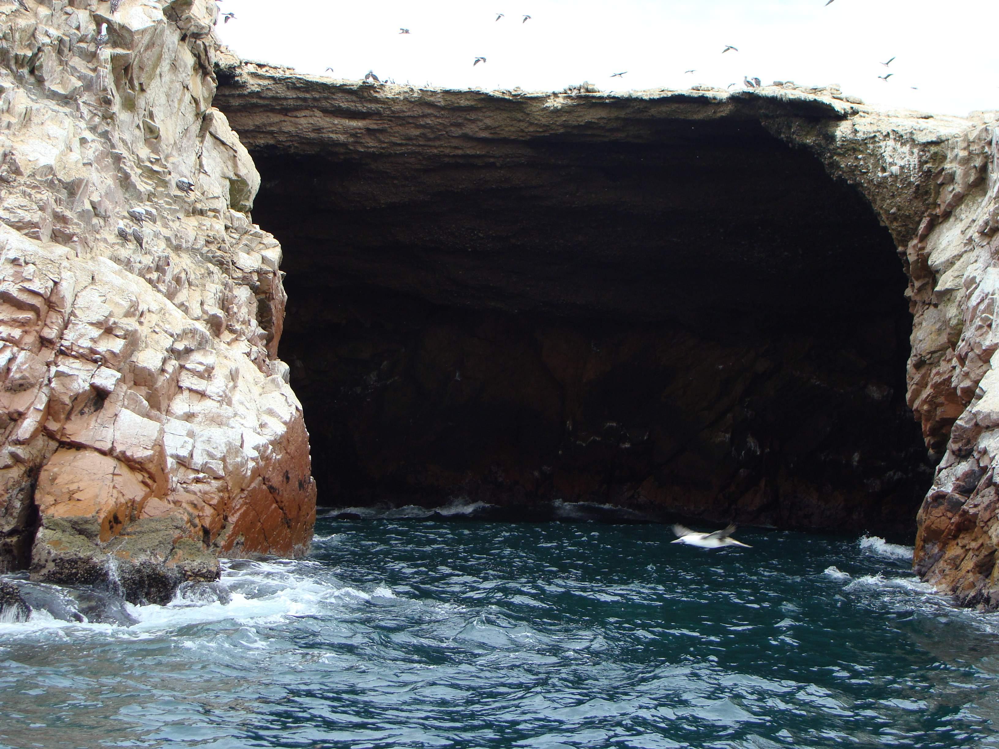 Národní Reservace Islas Balestas - biotop 22. 2. 2011